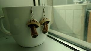 Muschrooms